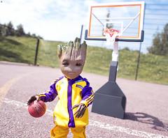 Lebron Groot (Jezbags) Tags: lebron groot iamgroot babygroot macro macrophotography macrodreams marvel marvelstudios canon canon80d 80d basketball nba hoop avengers guardiansofthegalaxy