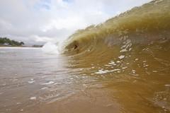 IMG_0281A (Aaron Lynton) Tags: hector hurricane hurricanehector waves shorbreak shorebreak maui hawaii ocean zones fun barrel barreling luckywelivehawaii