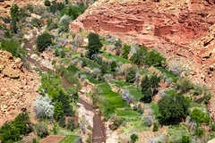 2018-4503 (storvandre) Tags: morocco marocco africa trip storvandre telouet city ruins historic history casbah ksar ounila kasbah tichka pass valley landscape