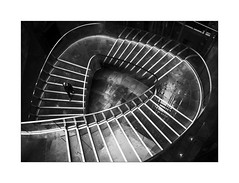 Three Sided Circle.... (Dave Fieldhouse Photography) Tags: staircase wet rain monochrome mono blackandwhite bnw grey building architecture modernarchitecture reflections puddles steel glass steps stair pedestrian person people streetphotography street interior design wwwdavefieldhousephotographycom fujifilm fujinon 23mm f2 fujixpro2 london england uk photography camera mirrorless shapes