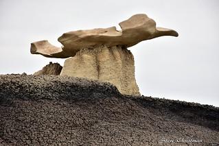Manta Ray In The Desert