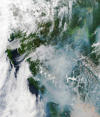 British Columbia Fires, 13 August 2018, variant (sjrankin) Tags: 16august2018 edited modis canada britishcolumbia rockymountains smoke clouds valleys wildfires fires 13august2018 large 2287mb