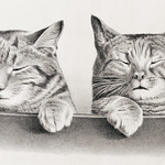 Cats by Thomas Hunter. Original from Library of Congress. Digitally enhanced by rawpixel. thumbnail