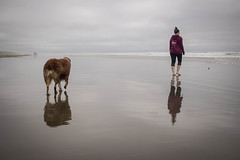 The girl of my life; the girl of her life - Oregon, US (Krousy) Tags: dog person beach sea ocean pacific usa us oregon reflection sand water animal