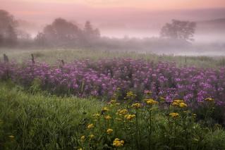 Lever du jour brumeux