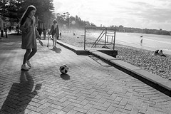 Manly beach, winter 2018  #568 (lynnb's snaps) Tags: 35mm manly xtol bw blackandwhite film 2018 kodaktrix400bwfilm kodakxtoldeveloper beach coast ocean sand girl ball playing leicaiiif leicafilmphotography cv21mmf4colorskoparltm bianconegro bianconero blackwhite biancoenero barnack blancoynegro noiretblanc schwarzweis monochrome ishootfilm