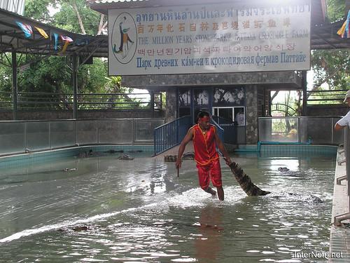 В пащу крокодилу Паттайя Таїланд Thailand InterNetri 27