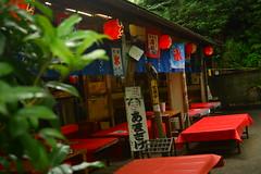 DSC_0022 (sxcxxhx) Tags: japan osaka kyoto hydrangea flower trip voyage 日本 大阪 京都 旅行