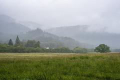 Misty Hills (Click And Pray) Tags: managedbyclickandpraysflickrmanagr landscape horizontal argyll scotland ardentinny hills mist pasture clouds shrouded nopeople landscapehorizontalargyllscotlandardentinnyhillsmistpasturecloudsshroudednopeoplegbr