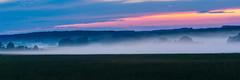 Abendnebel_27. Juli 2018 (D a v i d _ M) Tags: nebel mist misty foggy fog sonya7ii canon70200f4 sunset explore erkunden wald forest