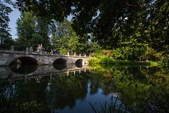 evening reflections (iwona.kilichowska) Tags: reflections trees day sunny scenery green plants bridge old outside