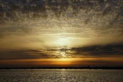 Altocumulus August (SteveJM2009) Tags: weather sunset poole dorset uk altocumulus clouds august 2018 stevemaskell sun rays explored