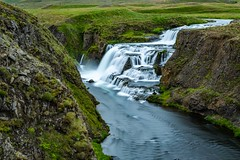 Reykjafoss (Einar Schioth) Tags: river rocks rock reykjafoss svarta svartá water waterfall day summer sigma2470 sigma skagafjordur canon coast cliff vividstriking nationalgeographic ngc nature landscape lake grass grassland photo picture outdoor iceland ísland einarschioth leefilters