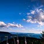 Ein kühler Sommerabend auf der Hornisgrinde im Nationalpark Schwarzwald thumbnail