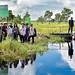 Bioenergy project
