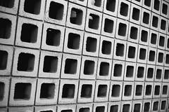(Casey Lombardo) Tags: bw bwphotography bwfp monochrome blackandwhite film filmphotography yashicaelectro35 yashica kodak kodakfilm kodaktmax100 tmax tmax100 texture textures breezeblocks concrete bricks