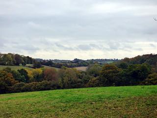 GOC Cholesbury to Chartridge 006: Landscape