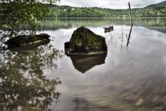 Peinture sur lac (matgau) Tags: canon6d poselongue longpose lac eau rocher rock courant pollen auvergnerhônealpes france paysage landscape pierre arbre