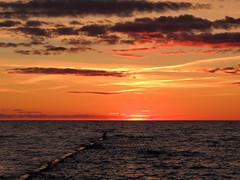 Sonnenuntergang (Wunderlich, Olga) Tags: ostsee holzbuhne möwe vogel wolken hiddensee rügen wellen stimmung atmosphäre horizont
