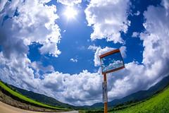 IMGP1655 (aquichang) Tags: landscape bluesky clouds fisheye trafficmirror summer japan 風景 青空 雲 魚眼 カーブミラー 夏 郊外 suburbs