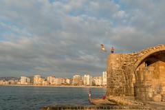 Diving (stefanos-) Tags: travelling backpacking diving divers swimmer swim crusader lebanon mediterranean castle sidon saida arab middleeast