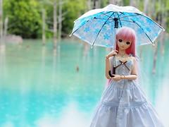 P8131682 (ranbutan) Tags: dd doll dollfiedream luka