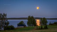 Full moon above the lake Korentojärvi (M.T.L Photography) Tags: barn moon lake korentojärvi water grass trees forest night summer bright northern roadtokuusamo mtlphotography mikkoleinonencom