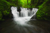 Emerald Trinity (Tyson Poeckh) Tags: water stream river creek flowing oregon columbiarivergorge spring longexposure foliage ferns nikon platinumheartaward