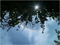 Sun halo (b. inxee♪♫) Tags: halo chiangmai rainbow sky sunhalo