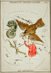 Sidney Hall's (1831) astronomical chart illustration of the Delphinus, Sagitta, Aquila, and the Antinous. Original from Library of Congress. Digitally enhanced by rawpixel. (Free Public Domain Illustrations by rawpixel) Tags: aerostatique animals antinous antique aquila arrow art arts astrological astronomy bow celestial character chart club constellations delphinus dolphins drawing eagle etchings fish hall handcolored illustrated illustration locimage mythological name old paints paper sketch stars vintage zodiac