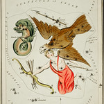 Sidney Hall's (1831) astronomical chart illustration of the Delphinus, Sagitta, Aquila, and the Antinous. Original from Library of Congress. Digitally enhanced by rawpixel. thumbnail