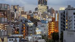 Shinjuku (B Lucava) Tags: tokyo shinjuku skyline skyscraper city cityscape urban building zeiss carlzeiss e touit2850 touit2850m touit emergencystairs architecture dusk citylights