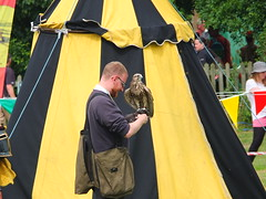 Saker Falcon and handler - DSCF3666 (SierPinskiA) Tags: ruffordabbeycountrypark rufford knightsofnottingham fujixs1 jousting medieval horse knights goldeneagle falcon