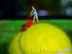 tennis ball mower (fx_photo1) Tags: tennis ball rasenmäher miniatur racket mower