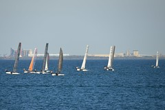 800_4897 (Lox Pix) Tags: queensland qld australia catamaran trimaran hyc humpybongyachtclub winterbash loxpix foilingcatamaran foiling bramblebay sailing race regatta woodypoint boat