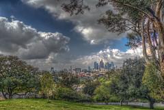 Elysium (Michael F. Nyiri) Tags: elysianpark losangeles downtownlosangeles california urban park clouds cloudscapes southerncalifornia