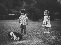 Hey my little friend, do you want to play with us? (Pavel Valchev) Tags: samyang rokinon children sofia bulgaria a7ii sony ilce emount fe walimex 85mm wideopen rni mf lens photoshop lightroom dog