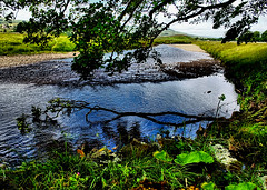 River Ure (tina negus) Tags: hawes river ure reflection branch wensleydale yorkshire dales