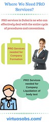 Where We Need PRO Services? (Virtuosobs) Tags: virtual office providers dubai business setup consultants pro service company services consulting companies formation freezone llc registration