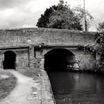 Bridge 95 thumbnail