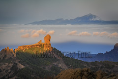 El Roque Nublo 1.818m con el fondo del Teide 3.717 m. - Tejeda - Isla de Gran Canaria - ROF7646-20180212 (Ramonof) Tags: tejeda roquenublo larana roquedelfraile roquebentayga teide grancanaria isladegrancanaria islascanarias canarias paisajescanarios paisajesdecanarias paisajesdegrancanaria fotosdecanarias fotografíasdegrancanaria imágenescanarias postalescanarias panorámicascanarias naturalezacanaria fotógrafosencanarias turismo canarias3d ramónoterofernández caminos senderos carreteras rutas paseos senderistas caminantes canaryislands landscapes canarianlandscapes landscapescanaries landscapesofthecanaryisland landscapesofgrancanaria picturesofcanarias canaryimages photographsofgrancanaria postcardscanaryislands panoramiccanarias naturecanaria photographersinthecanaryisl roads walkingtrails routes walks excursions people hikers tourists tourism españa landscapesofthecanaryislands photographersinthecanaryislands
