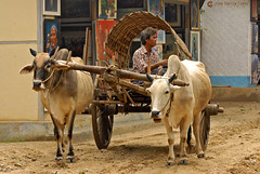 11-10-04 02 Myanmar (28) O01 (Nikobo3) Tags: asia myanmar burma birmania mandalay culturas social tuktuks rickshaw travel viajes nikon nikond200 d200 nikon7020028vrii nikobo joségarcíacobo