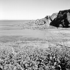 Cliffs and Rocks near Hartland Quay (holtelars) Tags: mamiya mamiyac220f c220f tlr twinlensreflex twinlens mamiyasekor 55mm f45 6x6 square squareformat 120 film 120film analog analogue rollei 100 rpx 100iso mediumformat blackandwhite classicblackwhite bw ishootfilm monochrome filmforever filmphotography xtol jobo atl1500 larsholte homeprocessing gossen profisix sbc england devon stoke hartland coast cliffs seascape landscape