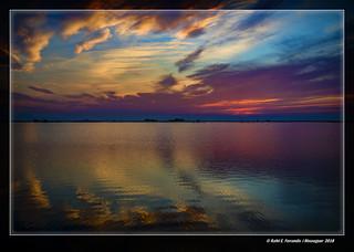 Ocàs a la marjal de Sueca 43 (Sunset at Sueca's marsh 43) El Perelló, la Ribera Baixa, València, Spain