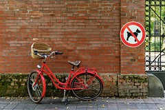 Das Stadtteil, wo ich lebe (44) (Janos Kertesz) Tags: bavaria bayern munich münchen fahrrad dog hund street bike bicycle transport wheel brick city travel pedal cycle wall old transportation road town