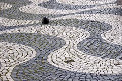 One dove - EXPLORE (MKP-0508) Tags: lisbon lisboa lisbonne taube dove pigeon colombe portugal pavement pflaster pavé mosaik mosaique mosaic wellen waves vagues lissabon pracarossio rossio explore inexplore