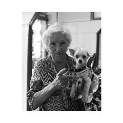 ... (jean76_58) Tags: pentax portrait streetportrait street photography regard blackwhite bw noirblanc nb monochrome urbain urban people chapeau personnes sdf home jcois rouen dog chien