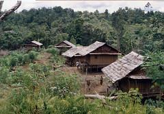 Muyu-Mandobo-015c (Stichting Papua Erfgoed) Tags: pietvanmensvoort msc papua stichtingpapuaerfgoed pace nieuwguinea nederlandsnieuwguinea irianjaya papuaheritagefoundation voormalignederlandsnieuwguinea