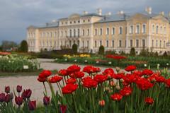 Pałac w Rundāle - ogrody (jacekbia) Tags: europa łotwa latvia pałac rundāle architecture architektura building budynek zabytek historicalplace canon 1100d ogrody gardens tulipany kwiaty flowers