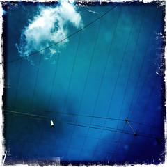 Grid + Cloud (Rantz) Tags: rantz mobilography 365 roger doesanyonereadtagsanymore victoria melbourne kodotxgrizzledfilm cables blue cableicious cloud clouds cablelicious hipstamatic bluetiful johnslens